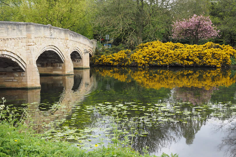 Leicester Abbey Park bridge and river