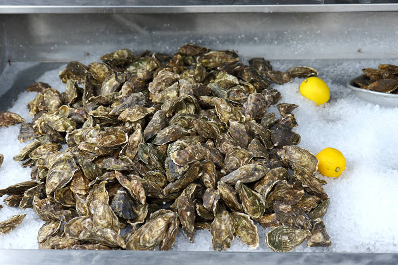 Oysters in Whitstable England
