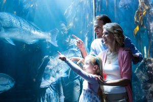 Parents with kid visiting an aquarium