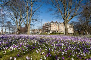 Harrogate town centre in Spring