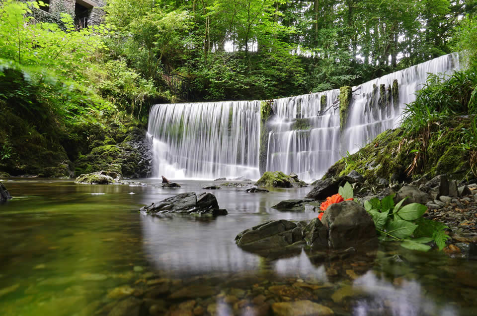 Ambleside Stock Ghyll Force Waterfall